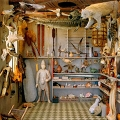 Photographer Rosamond Purcell's collection of objects from antlers to polar bears to antique figures