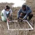 Two students in UMass Boston's Nantucket Living Lab at work at the Nantucket Field Station.