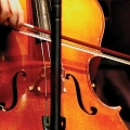 Image of a cello