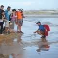 A group of students examine the coastline in Brazil.