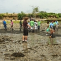 Students in Anamarija Frankić's class help restore the shellfish habitat in Boston Harbor.