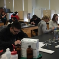 Students at the High School Marine Science Symposium take part in a workshop on plankton.