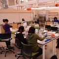 A group of 8 students sit or stand around lab benches in the Sandbox Lab, conducting experiments.