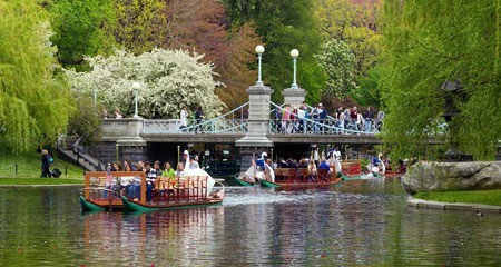 View of the Boston Common and Swan Boats.
