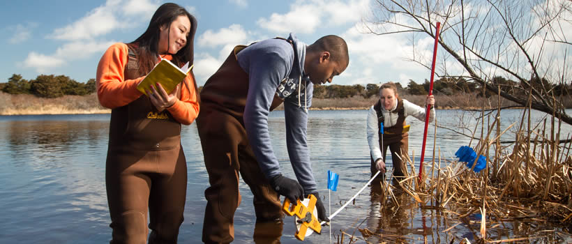 Students wading in water on Nantucket, taking measurements and notes