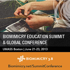 Biomimicry Education Summit and Global Conference