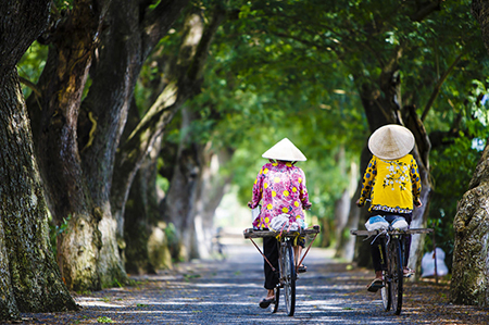 Two Vietnamese women cycling down a tree-lined boulevard.