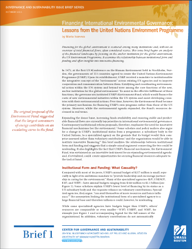 Image for Issues Briefs on Governance and Sustainability
