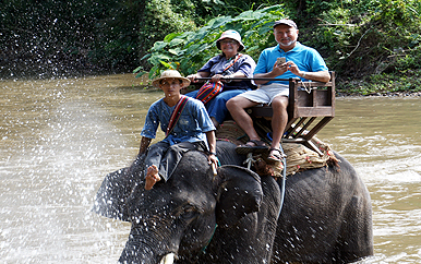 OLLI member at an elephant camp in Thailand during the Thailand trip in November 2015