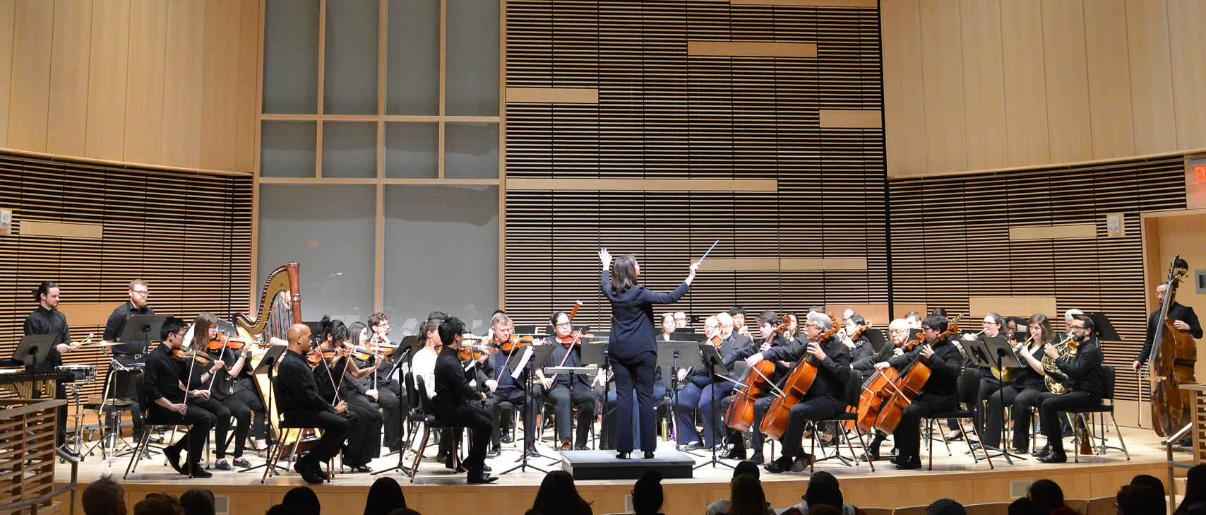 UMass Boston Chamber Orchestra