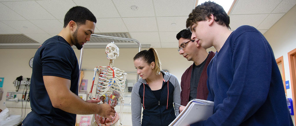 EHS Students examine a model skeleton with the digestive system in the CCER lab.