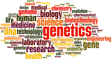 Word cloud displaying various biological terms related to DNA.