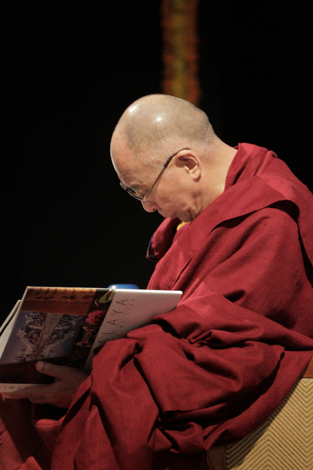 Dalai Lama reading HImalaya