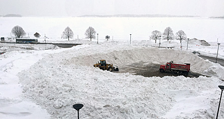 snowfarm at UMass Boston. Photo by Diane D'Arrigo.