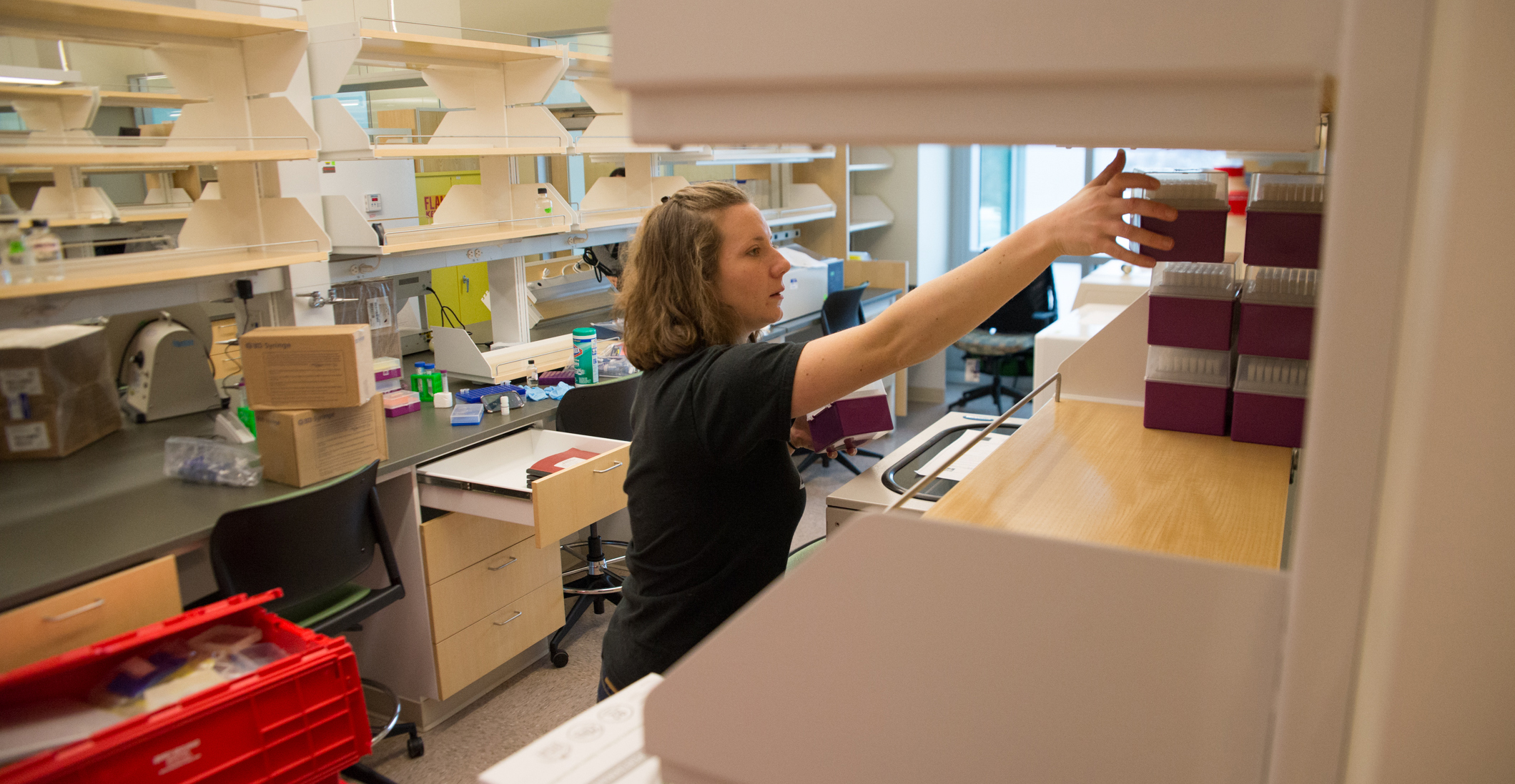 PhD student Jamie Dombach sets up her lab space
