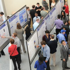 Poster presentations from 2015