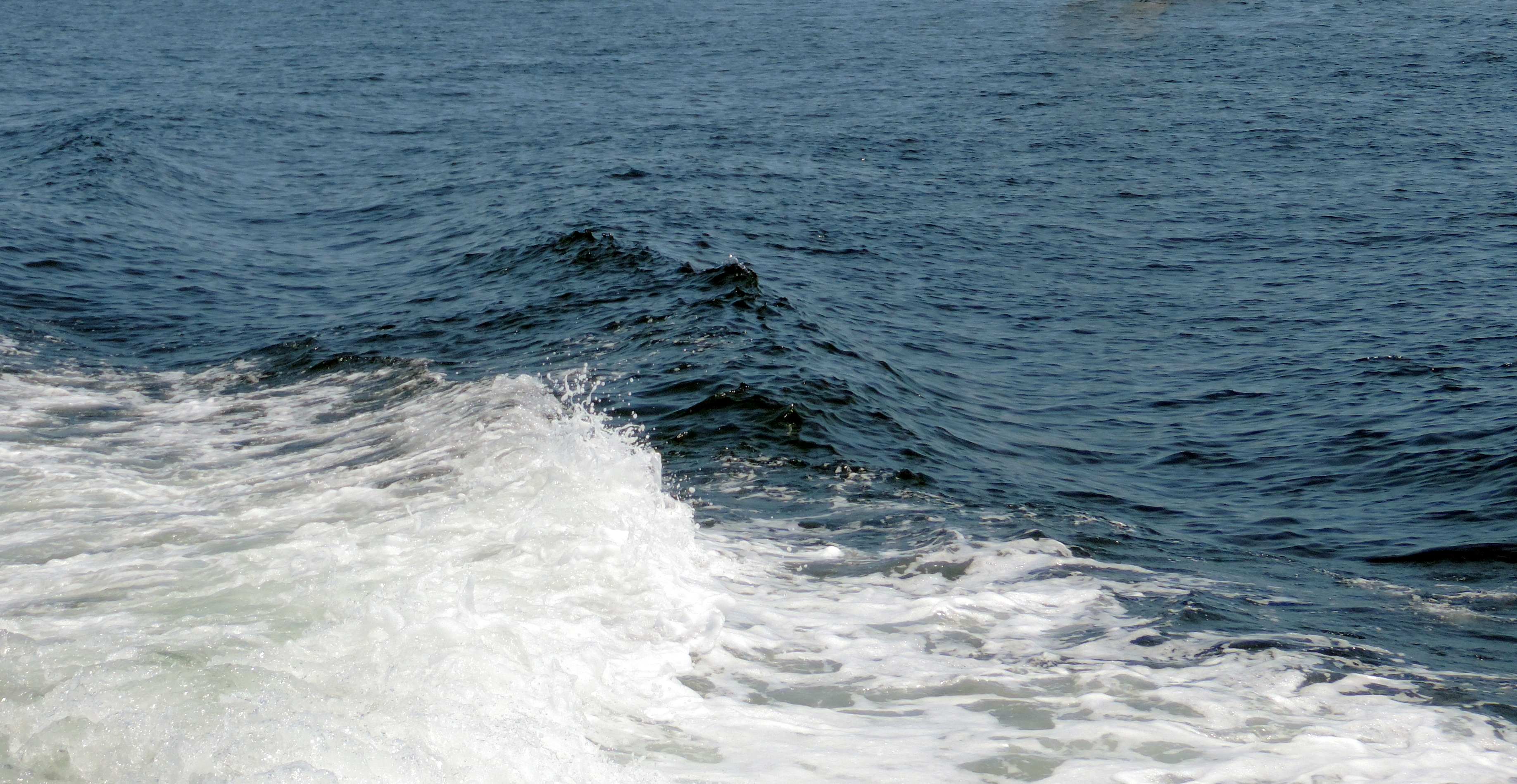 Boston Harbor waves