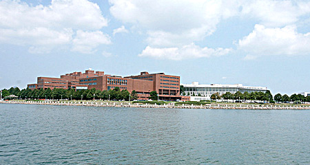 UMass Boston view from the water