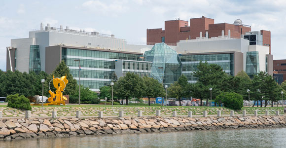 Just in Time for Earth Day, UMass Boston Named in Green Colleges Guide