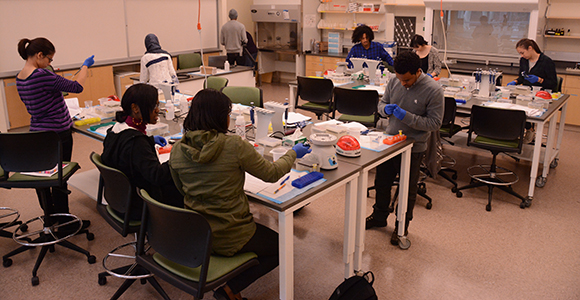 Students study biology in the Sandbox Lab