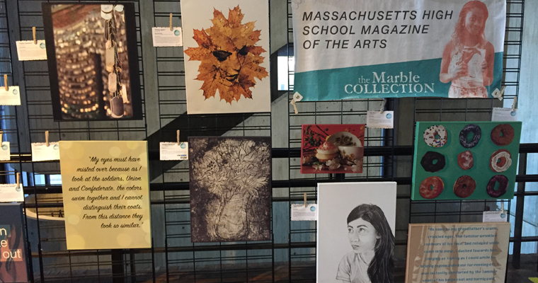These are just some examples of the work displayed at Boston City Hall through November 30.
