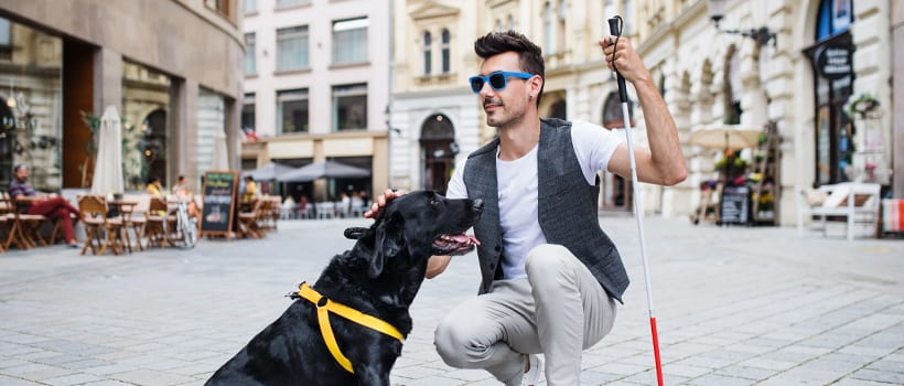 Young man with a service dog and cane pausing on a scenic city street.