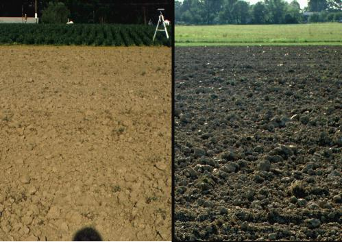 Side-by-side images of a barren field with rough surface: On the left shows backscattering that happens when the sun is behind the observer and on the right is the image with the sun opposite the observer (forward scattering.)