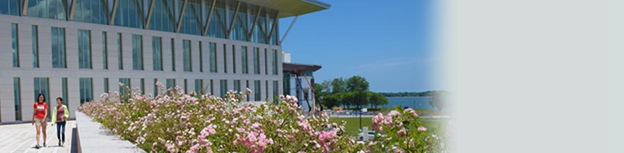 Rendering of the UMass Boston campus