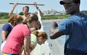This summer, study ecology at UMass Boston's Nantucket Field Station.
